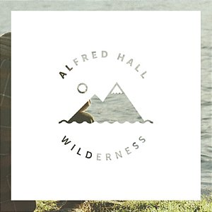 [중고] Alfred Hall / Wilderness