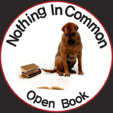 [중고] 낫띵 인 커먼 (Nothing In Common) / Open Book